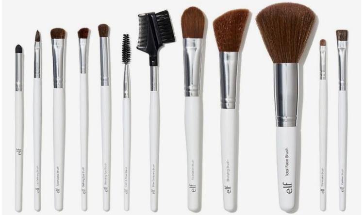 Elf $12 brush set review Beauty explore online